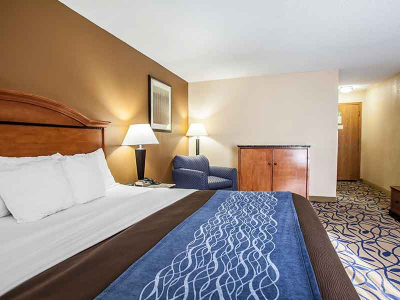 https://bourbonnaiscomfortinn.com/wp-content/uploads/2017/03/standard-king-room-comfort-inn-bourbonnais-illinois.jpg