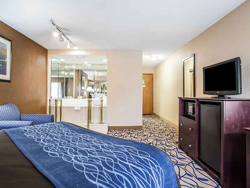 https://bourbonnaiscomfortinn.com/wp-content/uploads/2017/03/whirlpool-suite-comfort-inn-bourbonnais-illinois.jpg